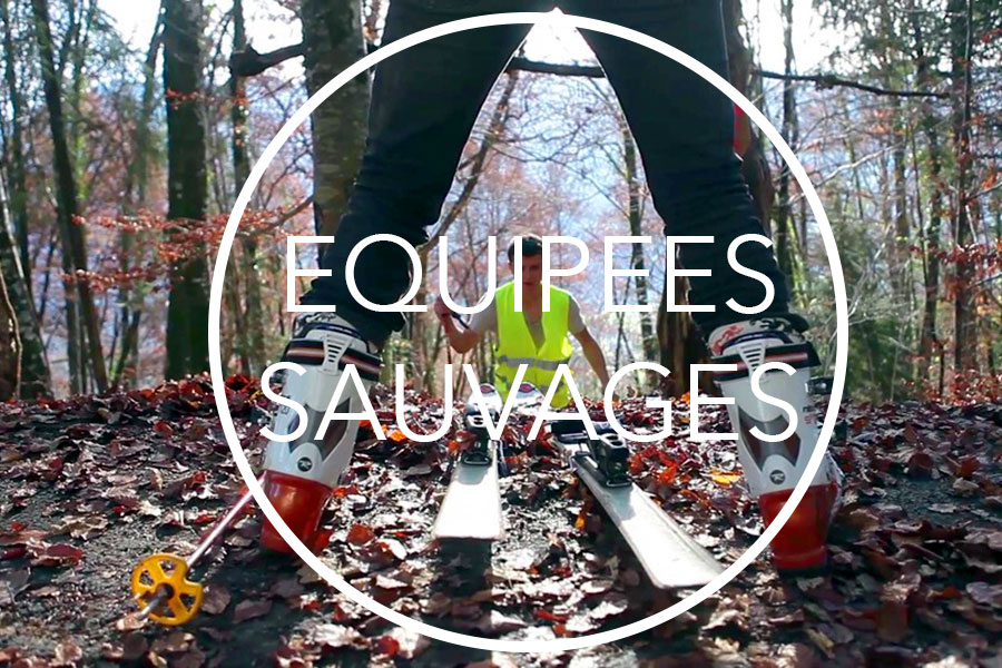 Equipées Sauvages